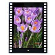 Porta retrato de vidro filme vertical 15x20 cm