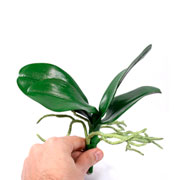 Folha de orquídea com raízes artificial 23 cm