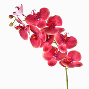 Orquidea rosa artificial 95 cm