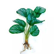 Planta artificial verde 46 cm