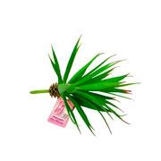 Planta artificial suculenta verde claro 15 cm