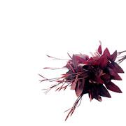 Buque artificial folhas vermelho marsala 55 cm