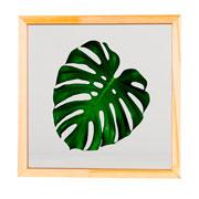 Quadro de vidro Costela de Adão 27x27 cm