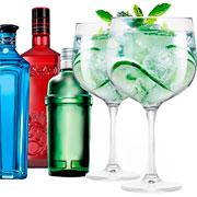 Jogo de taças para gin gambo transparente 705 ml 02 peças