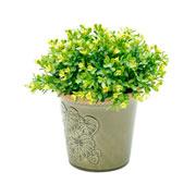 Vaso de cerâmica adam leaf verde 13 cm