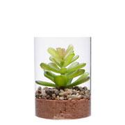 Vaso de vidro com planta artificial suculenta 10 cm