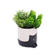 Vaso de cerâmica cat branco e preto 07x07 cm